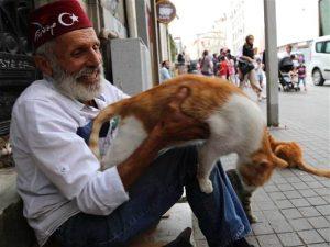 Suleyman Akova